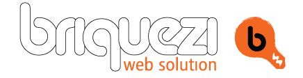 Briquezi Web Solution